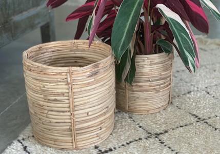 Cestos bambu